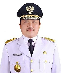 500px-Ria_Norsan,_Wakil_Gubernur_Kalimantan_Barat