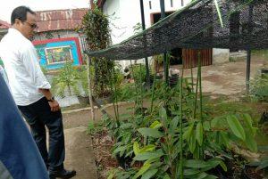 Kadistan Kalimantan Barat memperlihatkan bibit tanaman yang akan dikembangkan