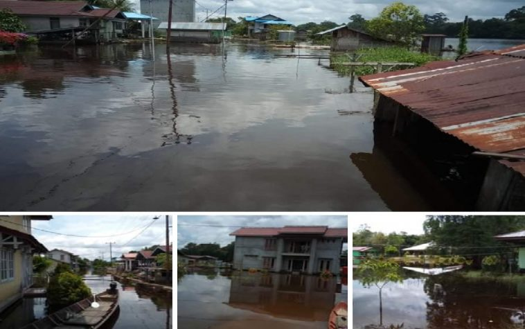 banjir silat hilir