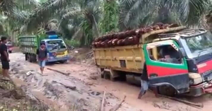 jalan rusak kebun sawit