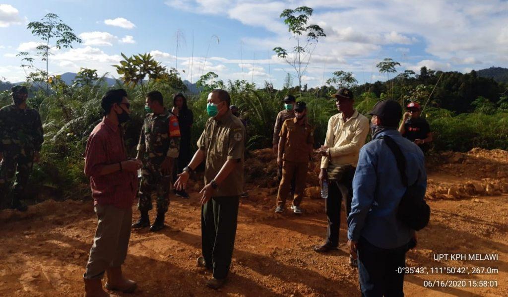 agroforestry.2