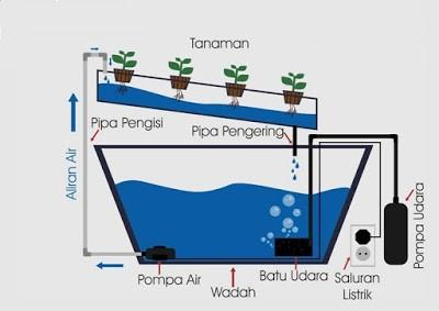 sistem hydroponik