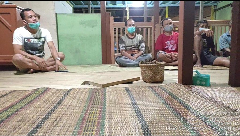 kayan hulu desa msau.2