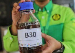 biodiesel b30